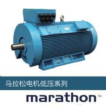 55KW Marathon马拉松电机